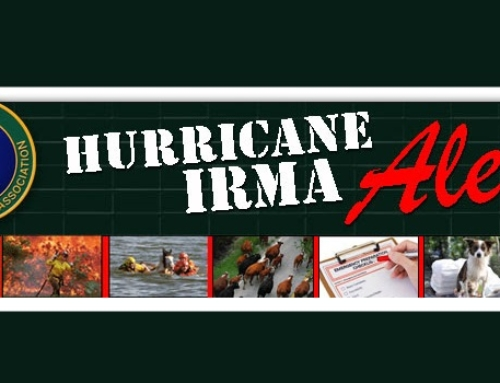 Hurricane Irma Alert – Effective Immediately