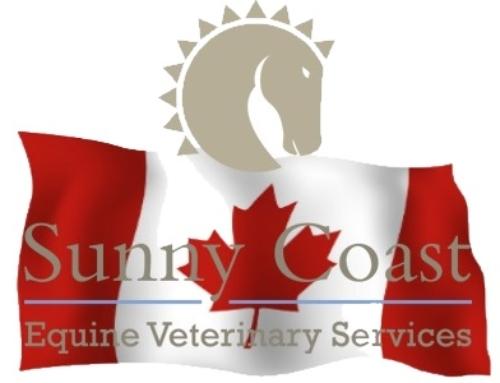 Sunny Coast Veterinary Expands to Canada!